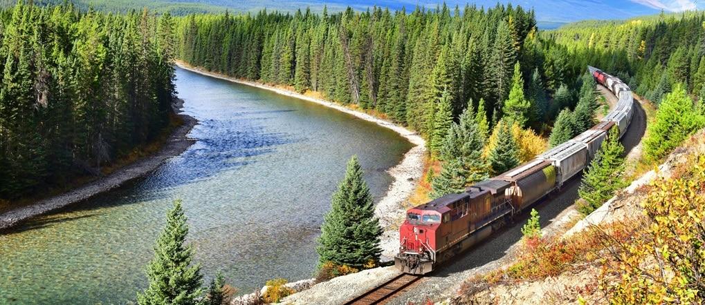 Railroad through woods